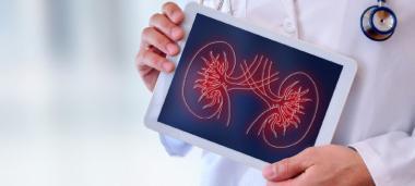 Autorisé à pratiquer une activité de transplantation de rein chez l'adulte, le CHT va pouvoir prélever les organes sur tous types de donneurs, puis les greffer.