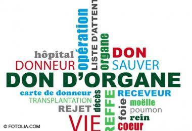 don-organe_453accc60d610f13d410913621a79212.jpg