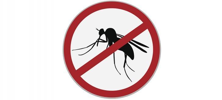 Nouveaux moustiques, réunion publique à La Tontouta